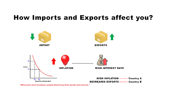 how import export affect economy