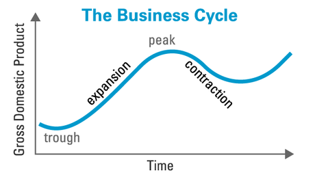 real business cycle theory ignou economics