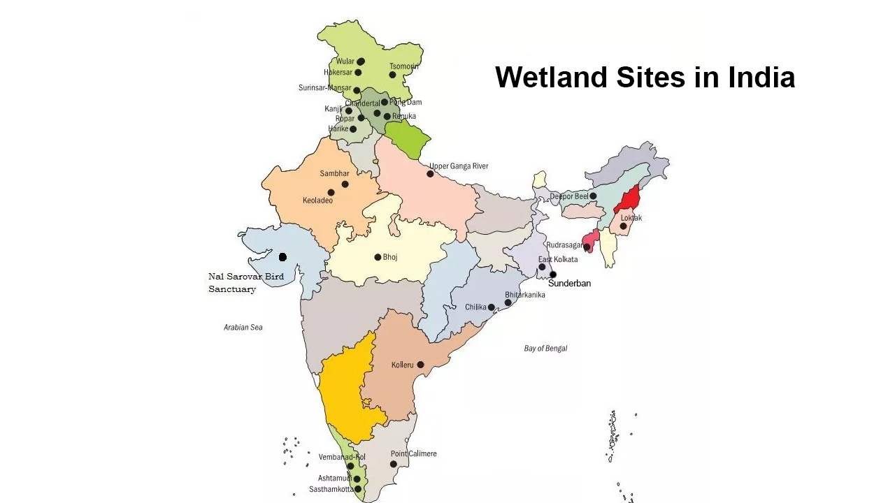 wetlands in india - upsc ias cds nda